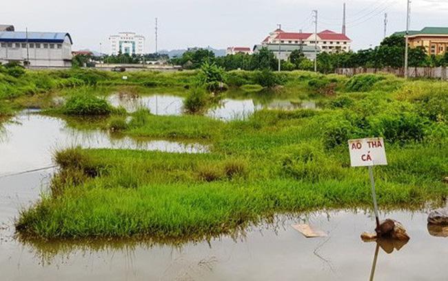 Ninh-Bi-h2.jpg